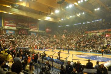 Bill Kralovec (Red Star Belgrade versus Maccabi Electra - EuroLeague Basketball - Pionir Hall, Belgrade, Serbia - November 28, 2013)
